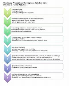 cpd nurse escapes the health objective what With nursing professional portfolio template