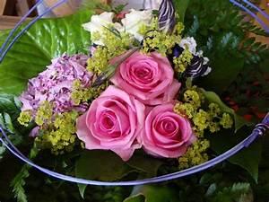 Bilder Blumen Kostenlos Downloaden : blumenstrau rosen kostenlose rosenbilder blumenbilder rosenbilder 035 ~ Frokenaadalensverden.com Haus und Dekorationen