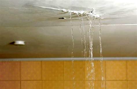 water leaking out of ceiling fan bathroom leaks the dream locker