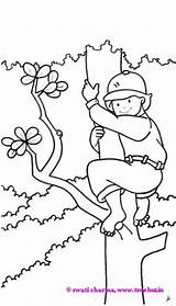Coloring Pages Clipart Clip Climbing Tree Boy Treehut Boys Childrens Paintings Sheets Sharma Swati Eid Rabbit sketch template