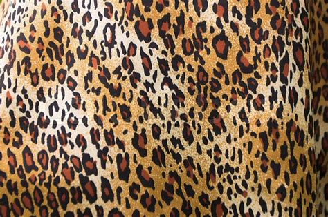 Free Animal Print Wallpaper Background - versatile leopard print background stock photo
