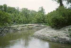 North Dakota Streams: Natural Levees