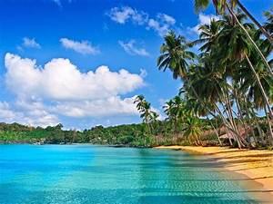 Beach, Caribbean, Wallpaper, Hd, 2560x1440, Wallpapers13, Com