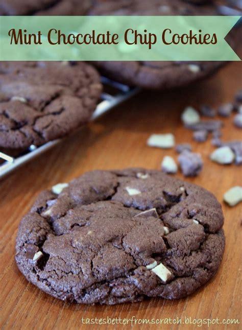 chocolate mint chip cookies  recipe magic