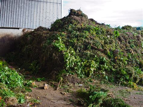 regulation review archives waste management review