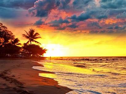 Sunset Tropical Beach Paradise Palm Sand Sea