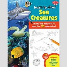 Learn To Draw Sea Creatures Stepbystep Instructions For More Than 25 Ocean Animals  64 Pages