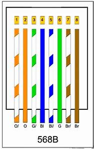 Diagram  Leviton Cat5e Wiring Diagram Network Cable