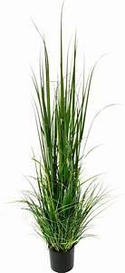 Kunstgras Im Topf : kunstgras gras im topf aus kunststoff online kaufen otto ~ Eleganceandgraceweddings.com Haus und Dekorationen