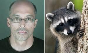 man killed raccoon  nail studded board  avenge