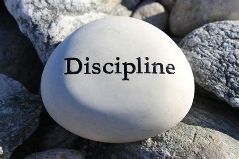 discipline  reality    fluid concept news