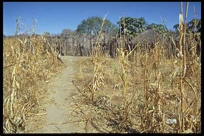 Dry Season Kavango Mpasi