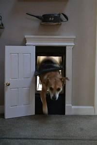 cute indoor dog house door With diy indoor dog house
