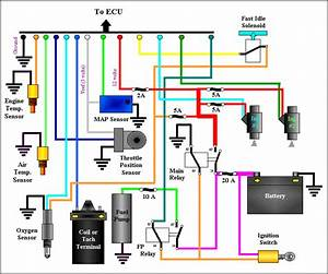 Harley Davidson Motorcycle Fuel Injection Diagram