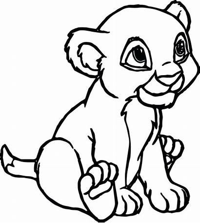 Lion Coloring Pages Cartoon Printable Mountain Cougar