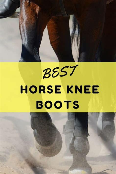 horse knee boots choose horses