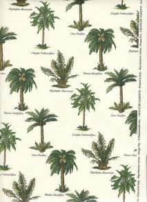 palm tree varieties palm tree wrapping paper with a botani flickr photo