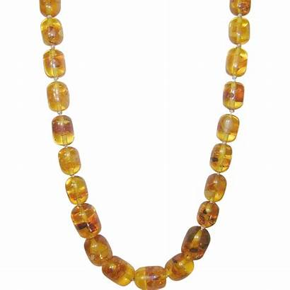 Amber Necklace Baltic Bead Shops