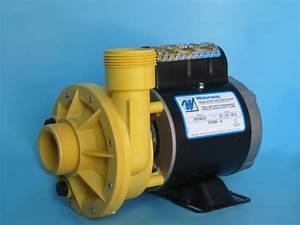 Waterway Spa Pump