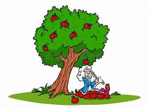 Newton Idea Law Of Gravity Apple Tree Stock Illustration ...