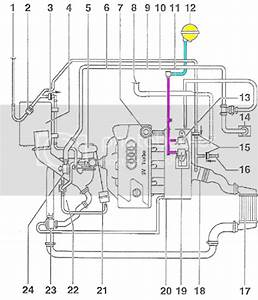 97 Jettum Engine Diagram Valve