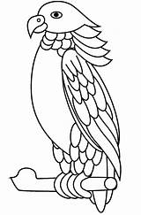 Parrot Coloring Sisserou Printable Pages Coloringonly A4 sketch template
