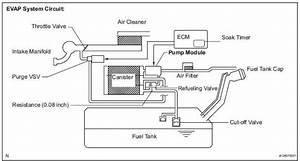 Toyota Sienna Service Manual  Evap System