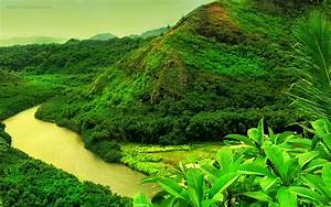 HD Nature Wallpapers: HD Nature Images Wallpapers For PC ...