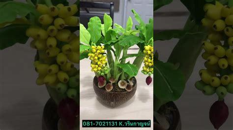 กล้วย ดินปั้นญี่ปุ่น - YouTube