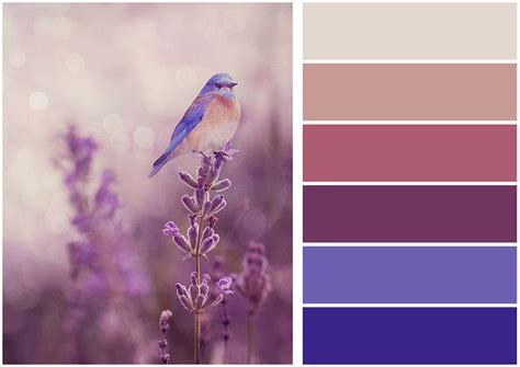 Arch-Tech Design Group   Colour Inspiration Weekly!