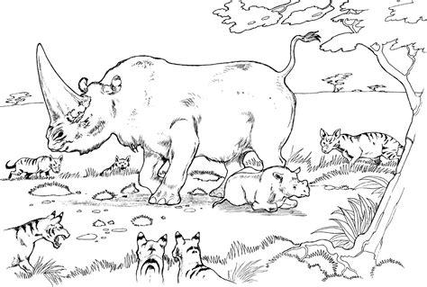 Rinocerontes Para Colorear
