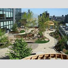 Environmental Benefits Of Green Roofs In Commercial And