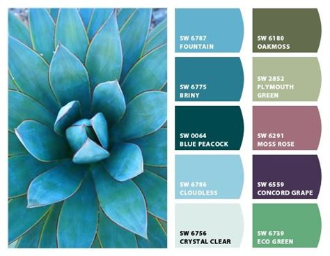blue glow agave palette chip it by sherwin williams home color palettes in 2019 color