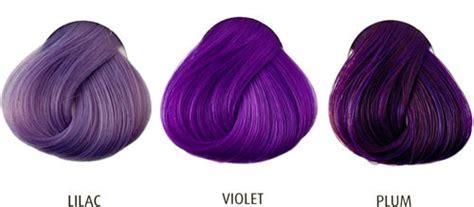 57 Posh Plum Hair Color Ideas
