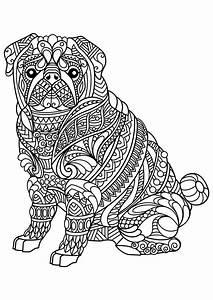 629 Best Adult ColouringCatsDogs Zentangles Images On Pinterest
