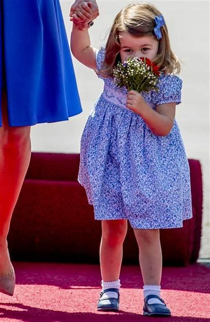 Charlotte Princess Birthday Happy Flowers Carmen Socks
