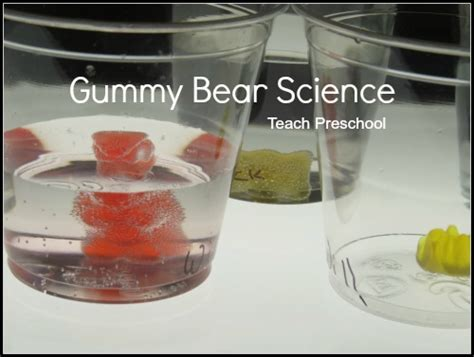 gummy science teach preschool 732 | Gummy Bear Science
