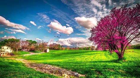 Landscape beautiful spring nature - HD wallpaper
