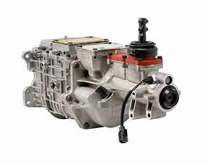 Tremec Tko 600  U2013 Forte U0026 39 S Parts Connection