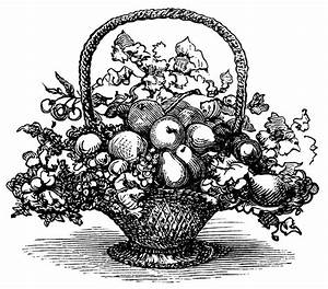 basket of fruit clip art, black and white clipart, vintage ...