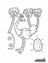 Ostrich Coloring Pages Printable Animal Egg Colouring Preschool Crafts Animals Activities Ostriches Childrens Kindergarten Zoo Bestcoloringpagesforkids sketch template