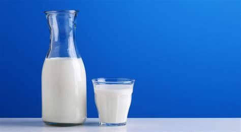 plats cuisines quelle est la différence entre un lait bio et un lait non