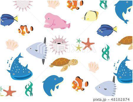 海 の 生き物 イラスト