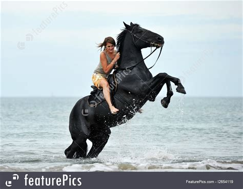 rearing horse stallion woman young sea rider riding water featurepics evermore dark preview