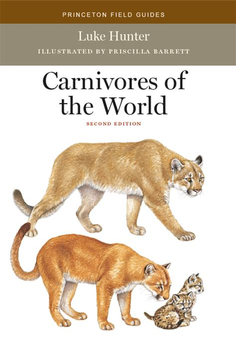 carnivores edition mammals 2nd mammal field gear princeton series guide groups around general based latest mammalwatching
