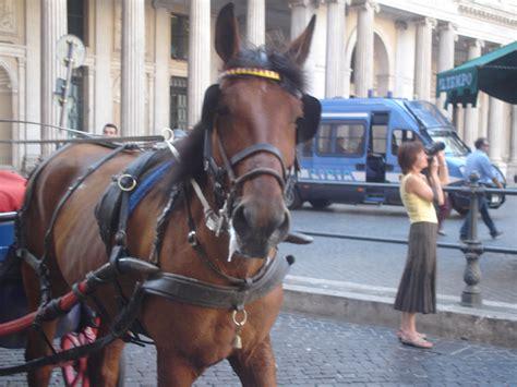 carrozze con cavalli trapani non ha bisogno delle carrozze con i cavalli lav