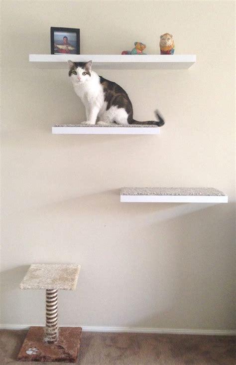 diy floating cat shelves diy inspiration woodwork