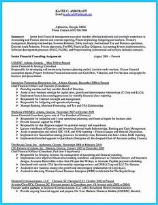 understanding a generally accepted auditor resume With auditor resume