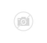 Сколько калорий есть чтобы похудеть на 10 кг за месяц