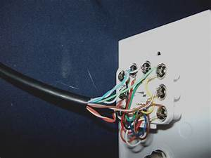 Get Cat5 Wall Plate Wiring Diagram Sample